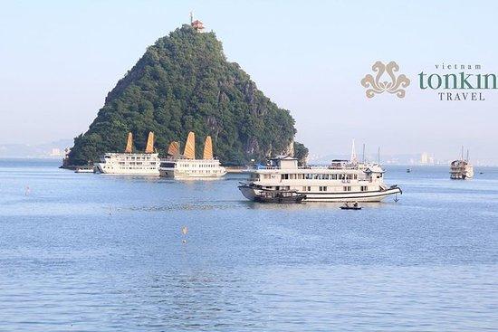 河内的下龙湾一日游:Titop岛,惊喜洞穴和皮划艇之旅