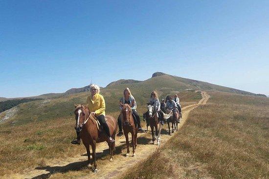 骑马 -  Nationalni公园Biogradska Gora