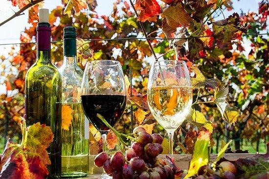 Full dag vinsmaking tur fra Telavi