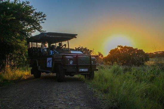 iSimangaliso Sunset Safari