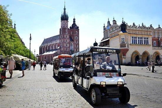 克拉科夫:电动汽车私人导游城市之旅