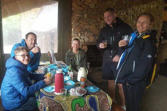 Addo elephant national park full day