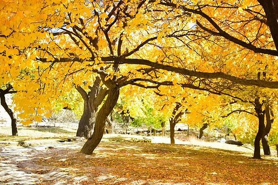 Autumn Trip to Hunza Valley & Skardu...