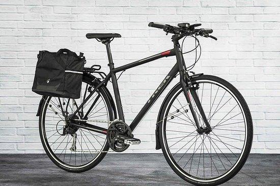 Alquiler de bicicletas y excursiones...