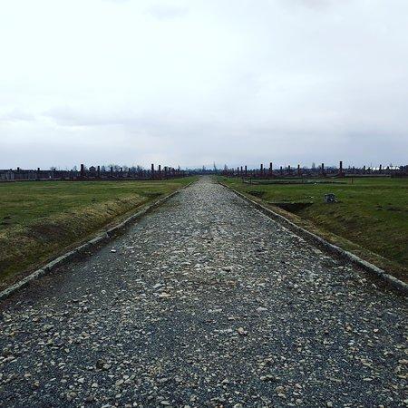 Krakow and Auschwitz-Memorial Tours by Matt: Auschwitz II Birkenau. BIIb sector.