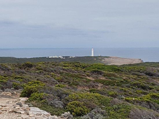 Cape Nelson Lighthouse