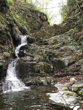 Kuzuryu Waterfall