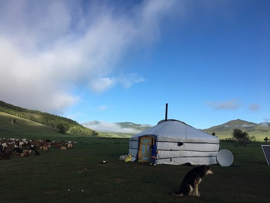 Selenge Province, Mongolië: This is how typical morning looks in Mongolian countryside.