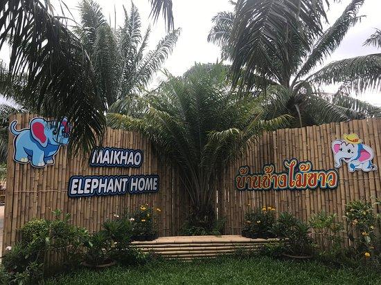 Maikhao Elephant Home