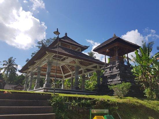 Explore Bali Cycling