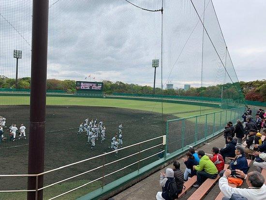 Daiichi Cutter Baseball Field