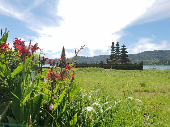 Pemuteran Menjangan Bali Transport