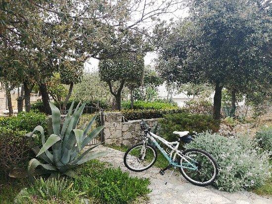 Rent a bike Zadar - Zara