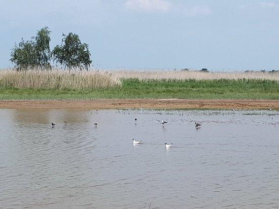 Terres d'Oiseaux