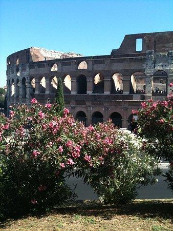 Transfers Rome.com
