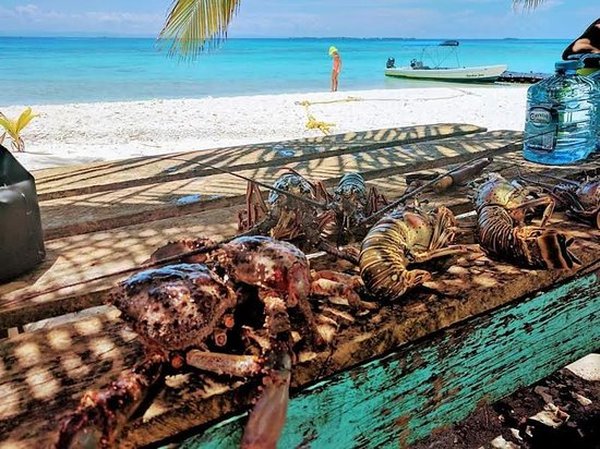 Freshly caught lobsters and crab caught at another fishing area and brought for lunch on a beautiful day at laughing bird caye national park, beautiful snorkelling and scuba diving seconds away from the beach.