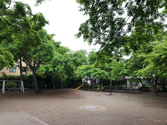 Momijiyama Park