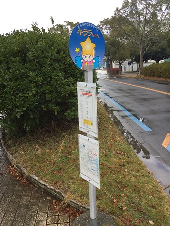 土浦市, 茨城県, キララちゃんバス