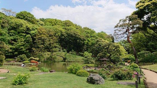 Higo-Hosokawa Garden: 190502Higo-hosoka wagarden fresh green