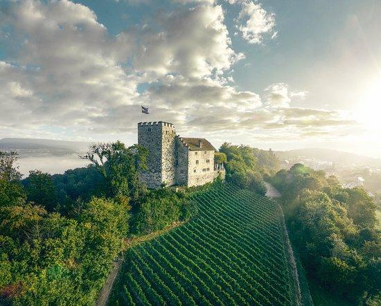 Aarau, Sveits: Castle Habsburg