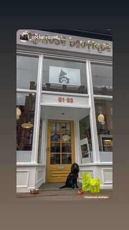 Doghouse Boutique