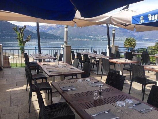 Pino Lago Maggiore照片