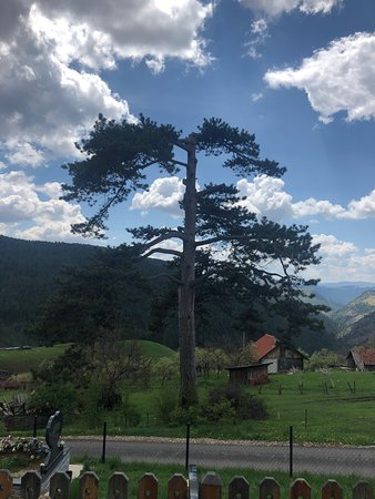 Dobroselica, เซอร์เบีย: Wooden Church