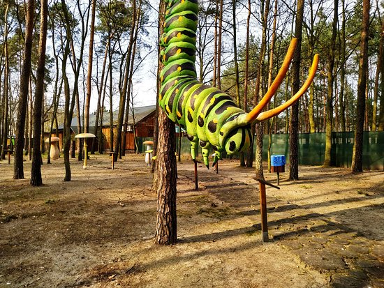 Ostrów Wielkopolski, Polska: Park Olbrzymich Owadów
