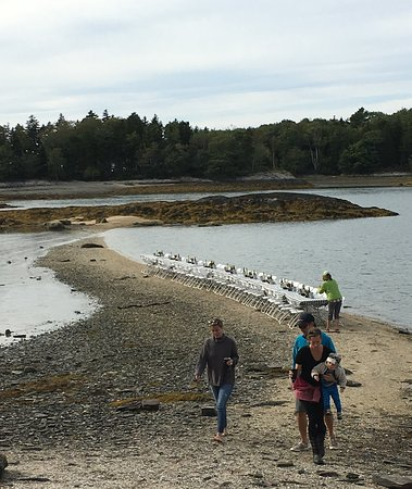 Maine Coast Heritage Trust event on Goslings