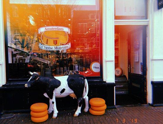 Something smells a bit cheesy   - Amsterdam Cheese Museum, Amsterdam