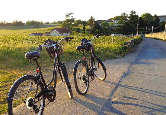 Les Bicyclettes de Saint-Emilion