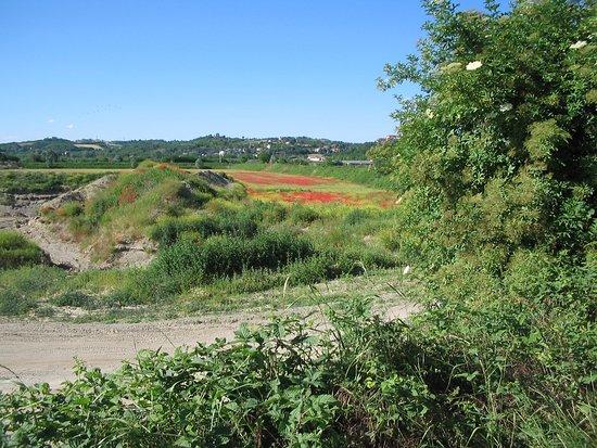 Alessandria, Italija: Particolare degli argini