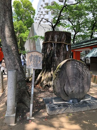 久しぶりの生田神社