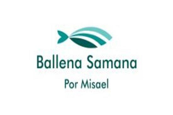 Ballena Samana by Misael
