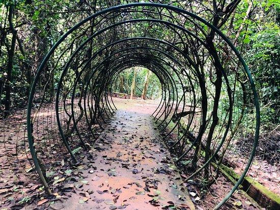 Parque Ecologico Rego dos Carrapatos