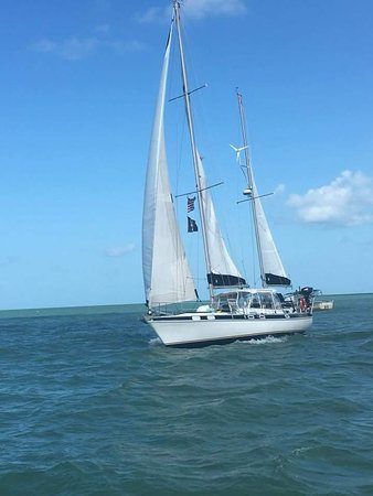 Trading Latitudes Sailing Excursions