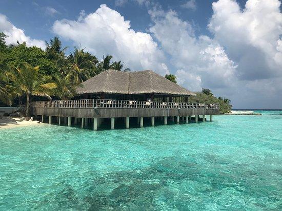 Eriyadu Island Resort: Bar