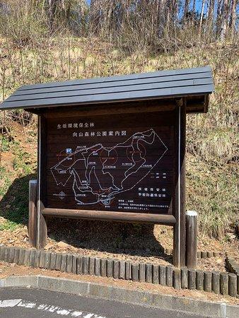 Mukaiyama Shinrin Park
