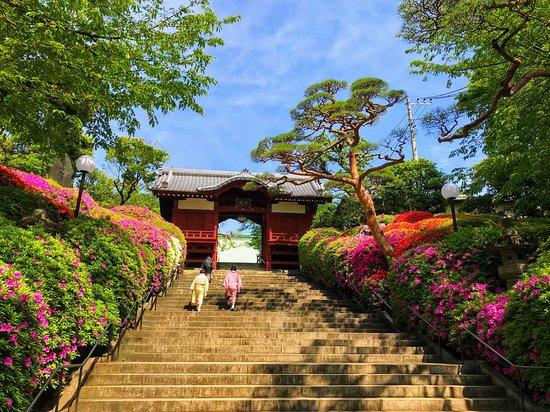 Gokokuji Temple: 不老門へ