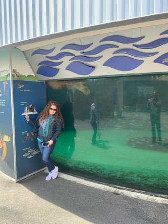 New York Aquarium Brooklyn 2019 All You Need To Know Before You