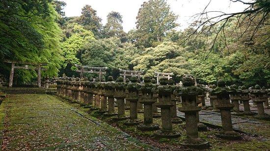 Hagi Hanshumorike Tomb