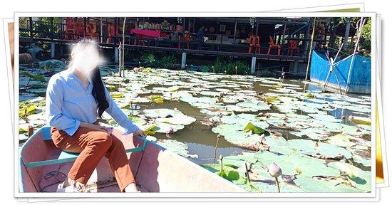 Lat Lum Kaeo, Tailandia: พายเรือเก็บดอกบัว