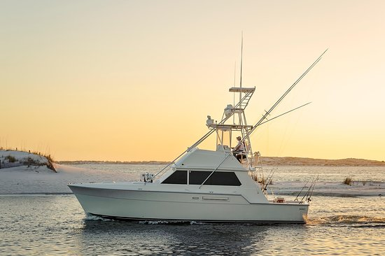 Saltwater Charters
