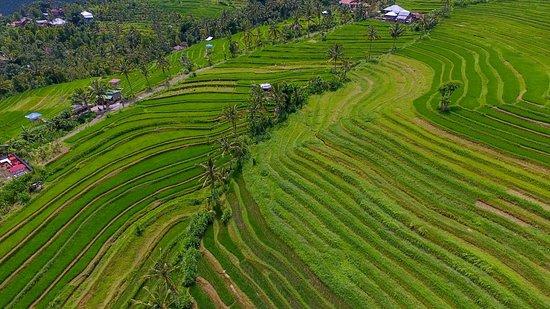 Sambangan Village