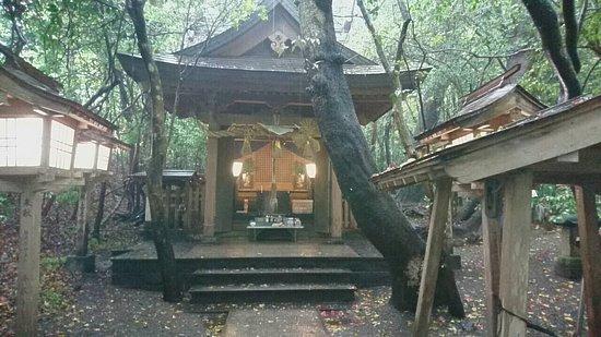 Eight Dragon King God of Water Shrine
