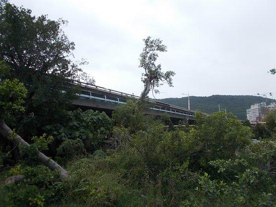 Jiuru Bridge
