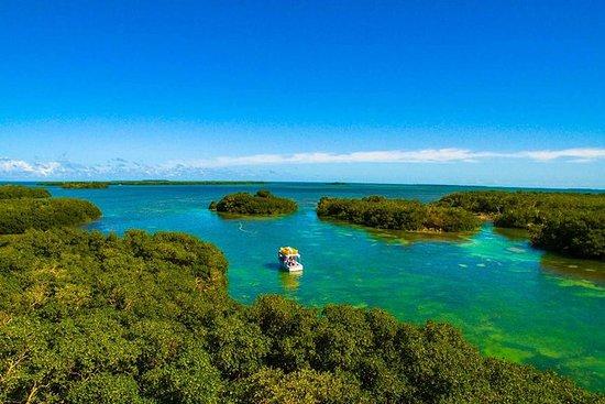 皮划艇和浮潜生态旅游小组与诚实的生态
