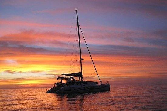 达尔文日落3小时游船包括晚餐和香槟