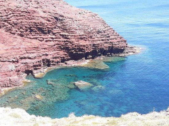 Capraia Isola, Italia: Torre dello Zenobito