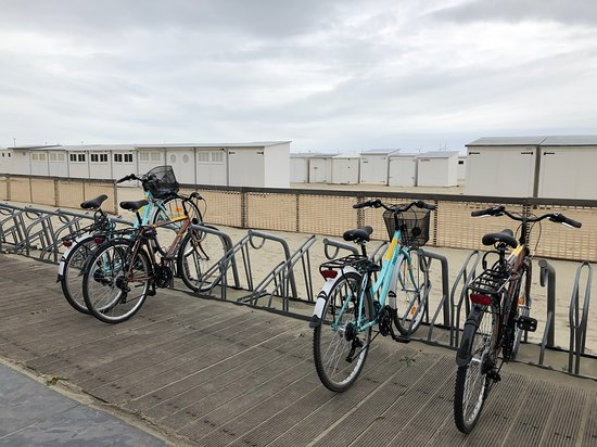 Pedalz Bike Rental